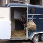 horse_trailer2