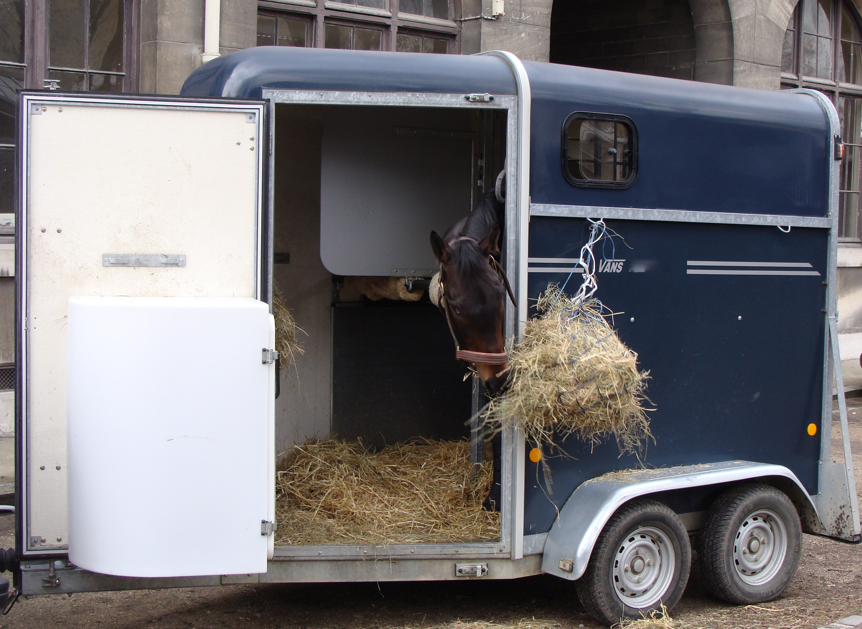 Horse Trailer Insurance – Do You Need It?